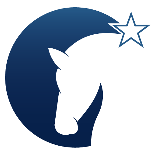 Shooting Star Psychology & Equine Therapy Logo